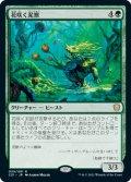 花咲く泥獣/Blossoming Bogbeast (C21)