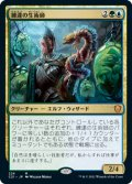 練達の生術師/Master Biomancer (C21)