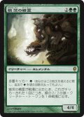 狼茨の精霊/Wolfbriar Elemental (CNS)《Foil》