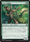 エルフの枝曲げ/Elvish Branchbender (DDU)