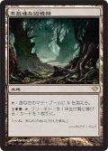 不気味な辺境林/Grim Backwoods (DKA)《Foil》