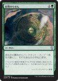 自然のらせん/Nature's Spiral (DOM)