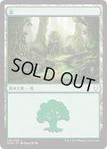 森/Forest【Ver.1】(DOM)