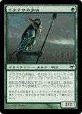 イラクサの歩哨/Nettle Sentinel (EVE)《Foil》