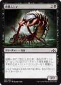 背骨ムカデ/Spinal Centipede (GRN)