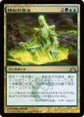 神秘的発生/Mystic Genesis (GTC)《Foil》