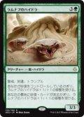 ラムナプのハイドラ/Ramunap Hydra (HOU)《Foil》