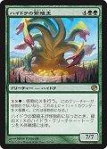 ハイドラの繁殖主/Hydra Broodmaster (JOU)《Foil》