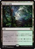 花盛りの湿地/Blooming Marsh (KLD)《Foil》