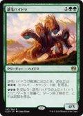 逆毛ハイドラ/Bristling Hydra (KLD)《Foil》
