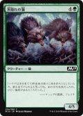 茨隠れの狼/Thornhide Wolves (M19)