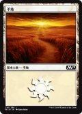 平地/Plains【Ver.1】(M19)