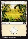 平地/Plains【Ver.2】(M19)
