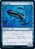 鋼ヒレの鯨/Steelfin Whale (MH2)