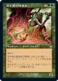 深き森の隠遁者/Deep Forest Hermit (MH2)【旧枠加工版・MH1】《Foil》