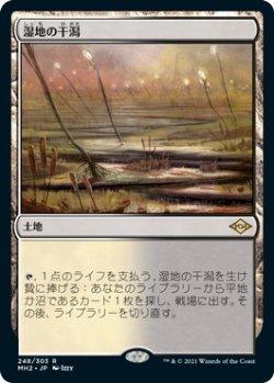 画像1: 湿地の干潟/Marsh Flats (MH2)