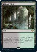 新緑の地下墓地/Verdant Catacombs (MH2)