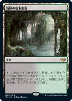 画像1: 新緑の地下墓地/Verdant Catacombs (MH2)