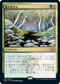 真の木立ち/Sterling Grove (MH2)【エッチング・フォイル版】