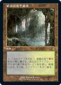 新緑の地下墓地/Verdant Catacombs (MH2)【旧枠加工版・MH2】