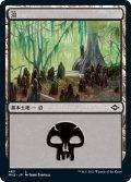 沼/Swamp 【Ver.1】 (MH2)