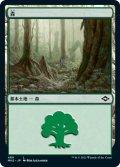 森/Forest 【Ver.1】 (MH2)