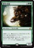 狼茨の精霊/Wolfbriar Elemental (MM2)《Foil》
