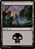 沼/Swamp (RIX)