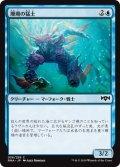 珊瑚の猛士/Coral Commando (RNA)
