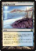 金属海の沿岸/Seachrome Coast (SOM)《Foil》