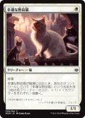幸運な野良猫/Charmed Stray (WAR)