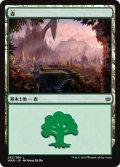 森/Forest【Ver.1】(WAR)