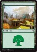 森/Forest【Ver.2】(WAR)