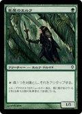 東屋のエルフ/Arbor Elf (WWK)