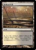 湿地の干潟/Marsh Flats (ZEN)