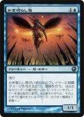 かき鳴らし鳥/Thrummingbird (SOM)