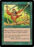 ウークタビー・オランウータン/Uktabi Orangutan (VIS)