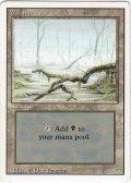 沼/Swamp【Ver.3】(3ED)