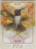 鳥/Bird 【Ver.1】 (Terese Nielsen Token)